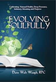 Evolving Soulfully_front cover_small